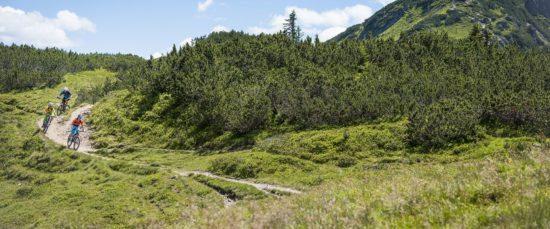Mountainbiken & Radfahren in Flachau
